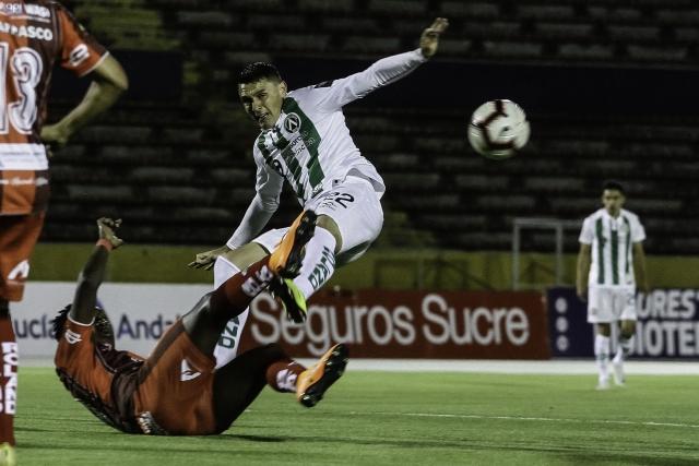 Armando Monteverde