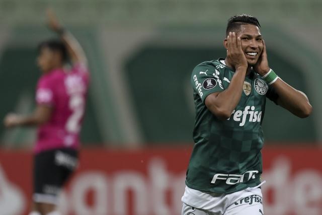 Palmeiras 3