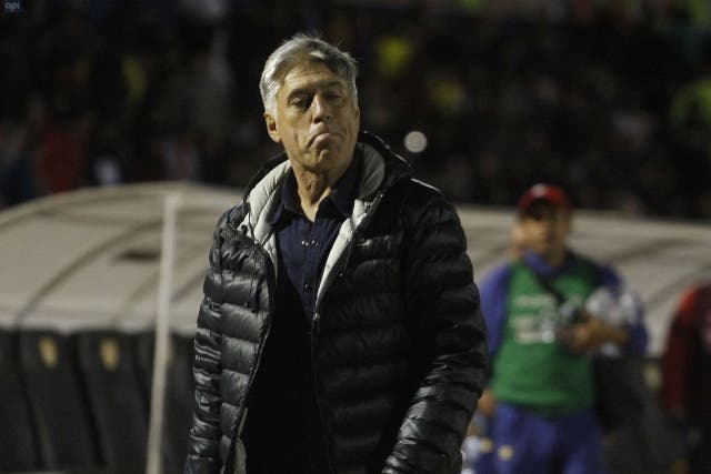 Marcelo Zuleta 2